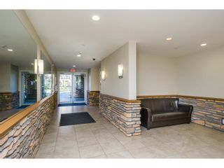 """Photo 15: 527 8288 207A Street in Langley: Willoughby Heights Condo for sale in """"Yorkson Creek Walnut Ridge II"""" : MLS®# R2051394"""