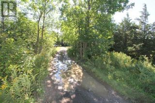 Photo 10: LT 3 SHORE RD in Brock: Vacant Land for sale : MLS®# N5357476