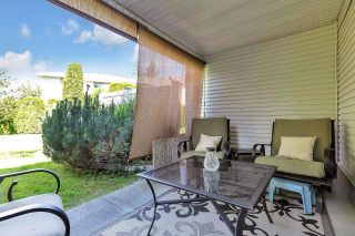 """Photo 37: 20 22751 HANEY Bypass in Maple Ridge: East Central Townhouse for sale in """"RIVERS EDGE"""" : MLS®# R2594550"""