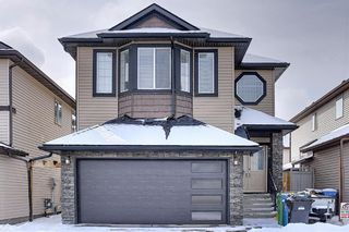 Photo 1: 458 Saddlelake Drive NE in Calgary: Saddle Ridge Detached for sale : MLS®# A1086829