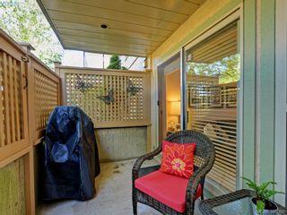 Photo 16: 107 2560 Wark St in VICTORIA: Vi Hillside Condo for sale (Victoria)  : MLS®# 792702