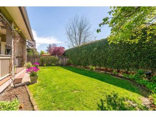 """Photo 20: 6 6177 169 Street in Surrey: Cloverdale BC Townhouse for sale in """"Northview Walk"""" (Cloverdale)  : MLS®# R2364005"""