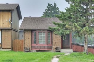 Main Photo: 4259 49 Street NE in Calgary: Whitehorn Detached for sale : MLS®# A1131311
