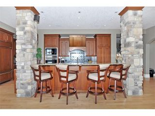 Photo 4: 18 DISCOVERY VISTA Point(e) SW in Calgary: Discovery Ridge House for sale : MLS®# C4018901