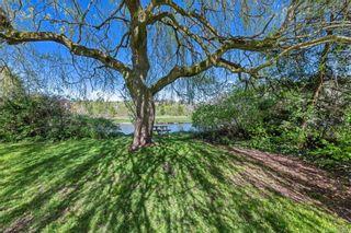 Photo 6: 734 Newbury St in Saanich: SW Gorge House for sale (Saanich West)  : MLS®# 837827