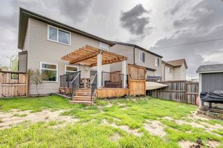 Photo 40: 104 Copperfield Crescent SE in Calgary: Copperfield Detached for sale : MLS®# A1110254