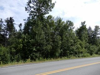 Photo 9: Pictou Landing Road in Pictou Landing: 108-Rural Pictou County Vacant Land for sale (Northern Region)  : MLS®# 202118660