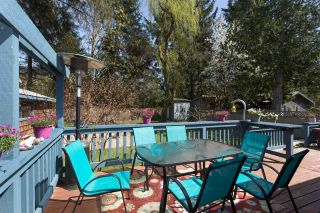 Photo 18: 41580 ROD Road in Squamish: Brackendale House for sale : MLS®# R2261542