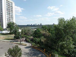 Photo 24: 201 9908 114 Street in Edmonton: Zone 12 Condo for sale : MLS®# E4254333