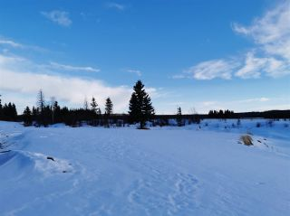 """Photo 14: 16458 SIPHON CREEK Road in Fort St. John: Fort St. John - Rural E 100th House for sale in """"CECIL LAKE"""" (Fort St. John (Zone 60))  : MLS®# R2444353"""