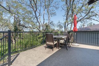 Photo 34: 3662 Dartmouth Pl in : SE Maplewood House for sale (Saanich East)  : MLS®# 874990