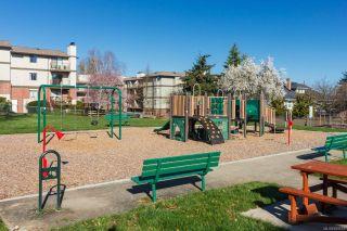 Photo 33: 302 1714 Fort St in : Vi Jubilee Condo for sale (Victoria)  : MLS®# 859812