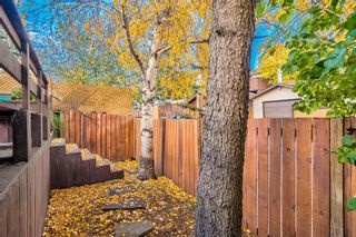 Photo 3: 508 Mckinnon Drive NE in Calgary: Mayland Heights Detached for sale : MLS®# A1154496