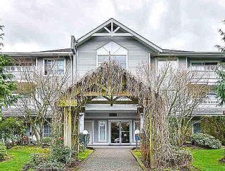 """Photo 1: 203 10130 139 Street in Surrey: Whalley Condo for sale in """"PANACEA"""" (North Surrey)  : MLS®# R2372360"""