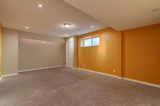 Photo 36: 1571 COPPERFIELD Boulevard SE in Calgary: Copperfield Detached for sale : MLS®# A1107569
