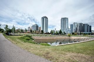 Photo 45: 315 510 6 Avenue SE in Calgary: Downtown East Village Apartment for sale : MLS®# A1012779