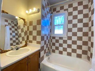 Photo 16: 12017 53 Street in Edmonton: Zone 06 House for sale : MLS®# E4261391