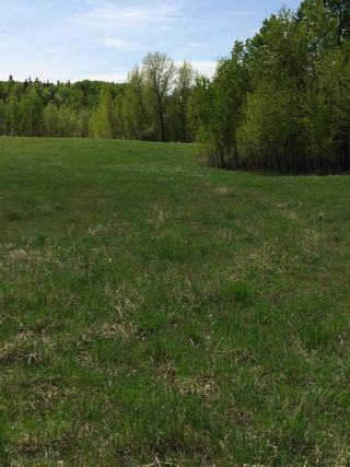 Photo 8: Twp 510 RR 33: Rural Leduc County Rural Land/Vacant Lot for sale : MLS®# E4239253