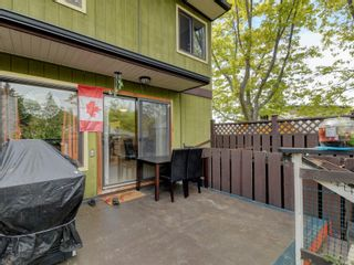 Photo 20: 1 1786 Albert Ave in Victoria: Vi Jubilee Row/Townhouse for sale : MLS®# 875448