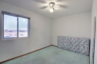 Photo 24: 351 Applewood Drive SE in Calgary: Applewood Park Detached for sale : MLS®# A1094539