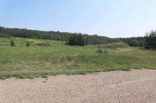 Photo 48: 23509 Twp 484: Rural Leduc County House for sale : MLS®# E4258040