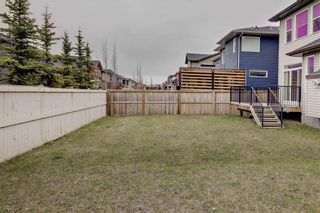 Photo 33: 18 EVANSFIELD Park NW in Calgary: Evanston Detached for sale : MLS®# C4295619