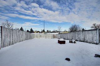 Photo 19: 109 Falmere Way NE in Calgary: Falconridge Detached for sale : MLS®# A1096389