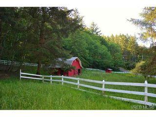 Photo 20: 5805 East Sooke Rd in SOOKE: Sk East Sooke House for sale (Sooke)  : MLS®# 732301