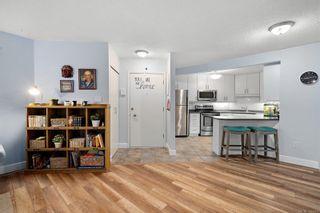 Photo 5: 1 1331 Johnson St in : Vi Fernwood Condo for sale (Victoria)  : MLS®# 862010