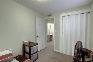 Photo 31: 208 Taradale Drive NE in Calgary: Taradale Detached for sale : MLS®# A1067291