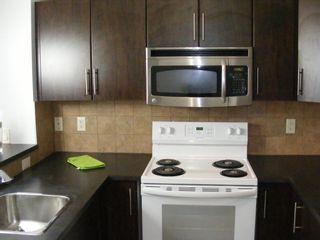 Photo 49: 206 2727 28 Avenue SE in Calgary: Dover Apartment for sale : MLS®# A1014596