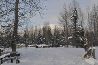 Photo 18: 16563 OLD BABINE LAKE Road in Smithers: Smithers - Rural House for sale (Smithers And Area (Zone 54))  : MLS®# R2537253