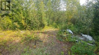Photo 2: 3820 GOLDMAN ROAD in Quesnel: Vacant Land for sale : MLS®# R2612418