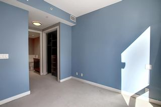 Photo 18: 817 222 Riverfront Avenue SW in Calgary: Eau Claire Apartment for sale : MLS®# A1101898