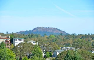 Photo 29: 306 1068 Tolmie Ave in : SE Maplewood Condo for sale (Saanich East)  : MLS®# 854176