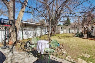 Photo 39: 116 Bowers Street NE: Airdrie Detached for sale : MLS®# A1095413