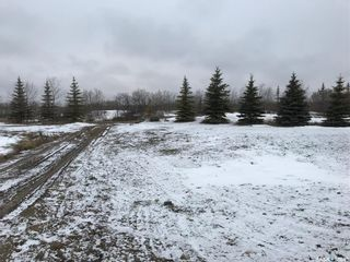 Photo 4: Norlin Acreage in Corman Park: Lot/Land for sale (Corman Park Rm No. 344)  : MLS®# SK846976