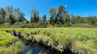 Photo 3: Lot New Albany in New Albany: 400-Annapolis County Vacant Land for sale (Annapolis Valley)  : MLS®# 202120180