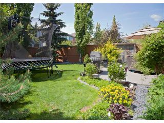Photo 37: 67 CHAPMAN Way SE in Calgary: Chaparral House for sale : MLS®# C4065212
