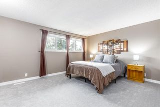Photo 17: 132 Pineland Place NE in Calgary: Pineridge Detached for sale : MLS®# A1110576