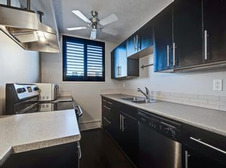 Photo 9: 501 505 19 Avenue SW in Calgary: Cliff Bungalow Apartment for sale : MLS®# A1062482