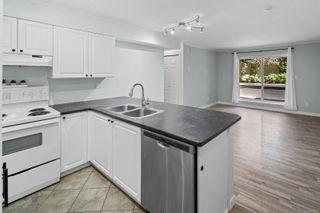 Photo 8: 103 827 North Park St in : Vi Central Park Condo for sale (Victoria)  : MLS®# 881366