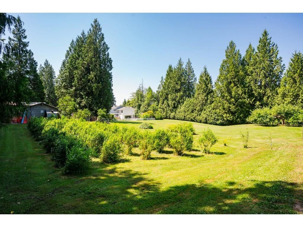 Photo 32: Photos: 26019 58 Avenue in Langley: County Line Glen Valley House for sale : MLS®# R2599684