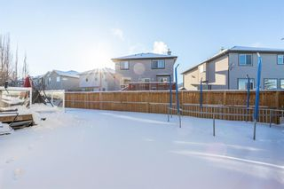 Photo 41: 133 West Ranch Place SW in Calgary: West Springs Detached for sale : MLS®# A1069613