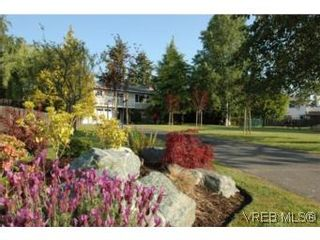 Photo 20: 7956 Arthur Dr in SAANICHTON: CS Turgoose House for sale (Central Saanich)  : MLS®# 535828