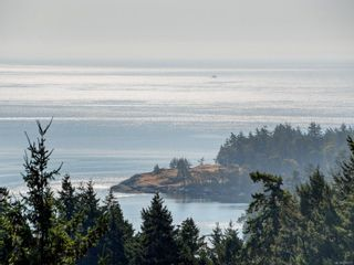 Photo 42: 3670 Seashell Pl in Colwood: Co Royal Bay House for sale : MLS®# 886412