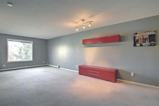 Photo 14: 205 7205 Valleyview Park SE in Calgary: Dover Apartment for sale : MLS®# A1152735