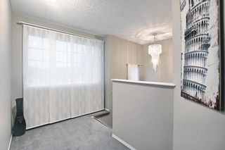 Photo 24: 144 Martinwood Court NE in Calgary: Martindale Detached for sale : MLS®# A1126396