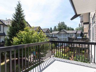 """Photo 19: 76 19932 70 Avenue in Langley: Willoughby Heights Townhouse for sale in """"Summerwood"""" : MLS®# R2380626"""