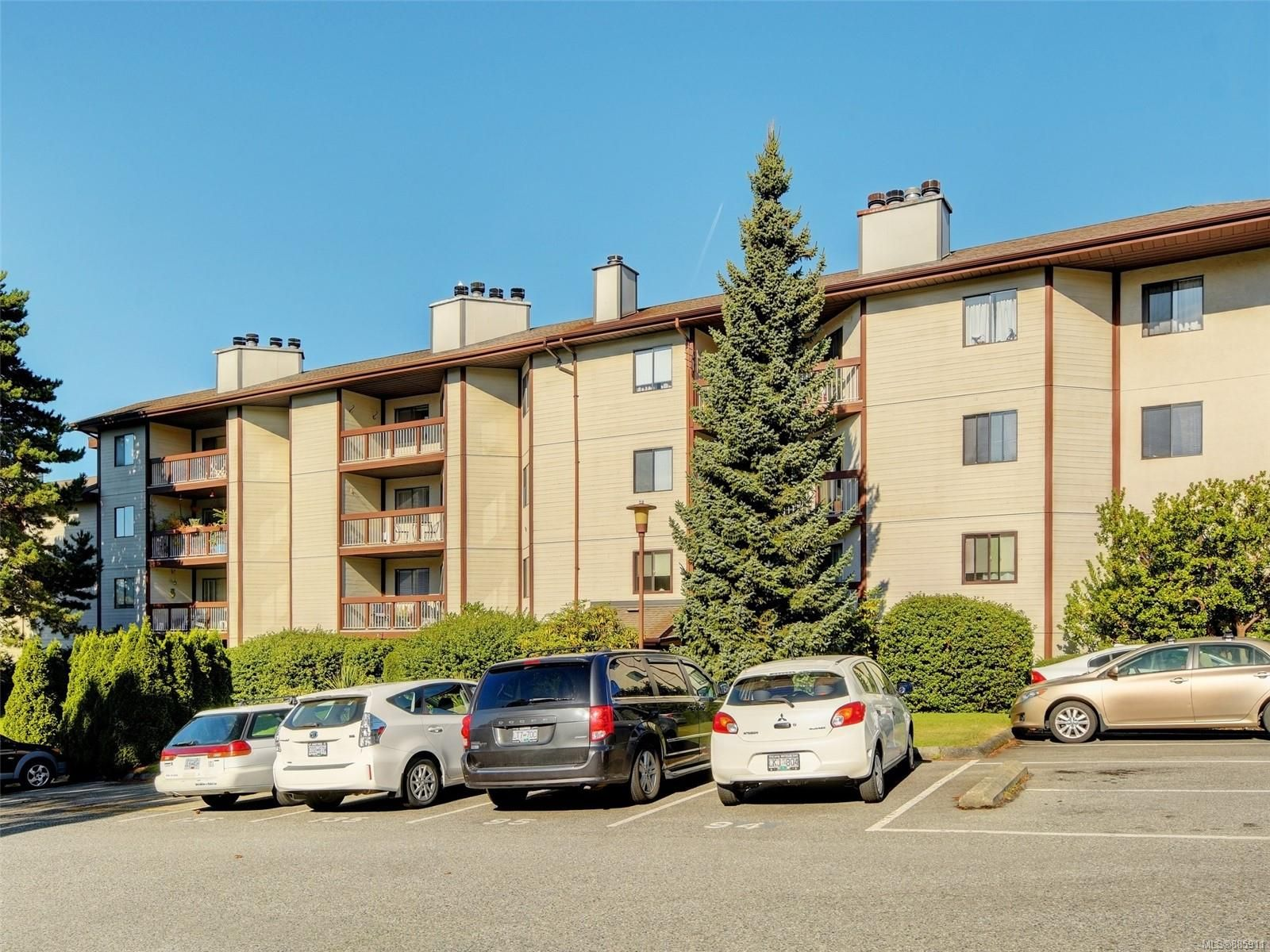 Main Photo: 302 73 W Gorge Rd in : SW Gorge Condo for sale (Saanich West)  : MLS®# 885911